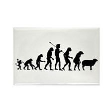 Evolution of Sheeple Rectangle Magnet