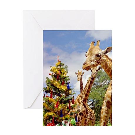 Christmas Animals Greeting Card