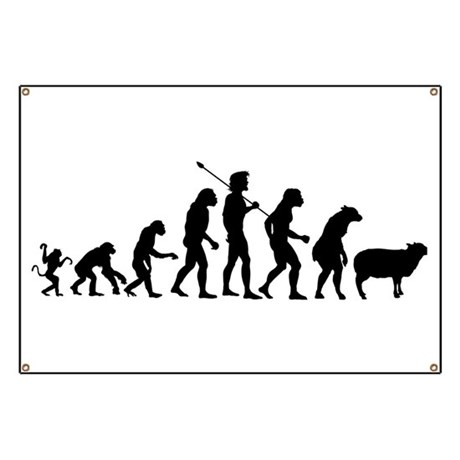 Evolution of Sheeple Banner