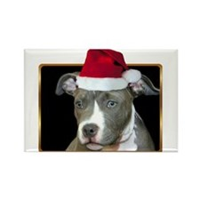 Christmas Pitbull Pup Rectangle Magnet