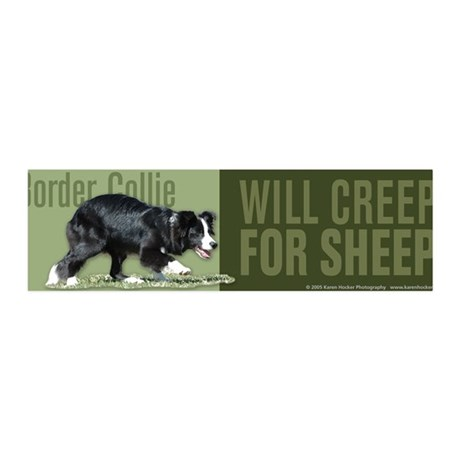 Border Collie Creep for Sheep 36x11 Wall Peel