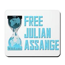 Free Julian Assange Wikileaks Mousepad