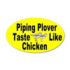 Piping plovers taste like chicken