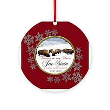 Joe Stein Ornament Ornament (Round)