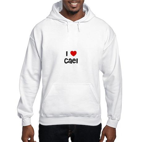 I * Cael Hooded Sweatshirt