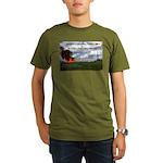 Boomershoot 2011 Organic Men's T-Shirt (dark)