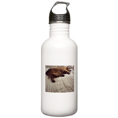 Pampered Stainless Water Bottle 1.0L
