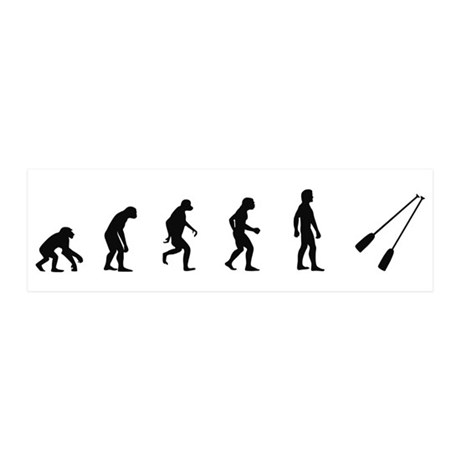 Evolution of Rowing 20x6 Wall Peel