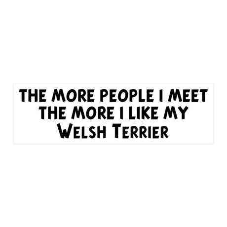 Welsh Terrier: people I meet 20x6 Wall Peel