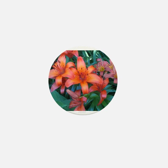 KWH Daylilies Mini Button