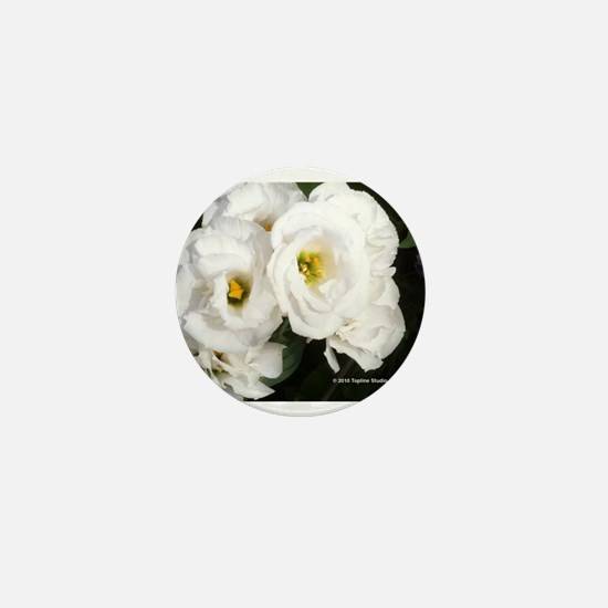 KWH White Mini Button