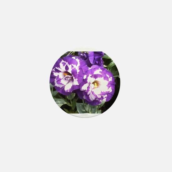 KWH Purple Mini Button