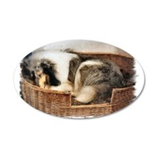 Collie Gifts of Art 20x12 Oval Wall Peel