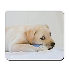 Labrador Puppy Dog Mousepad
