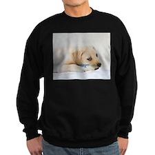 Labrador Puppy Dog Sweatshirt