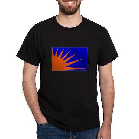 Sunburst (Fianna na hÉireann) Flag Black T-Shirt