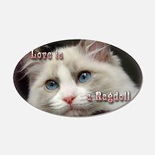 Ragdoll Cats 20x12 Oval Wall Peel