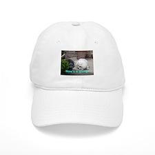 Cute Funny pet Baseball Cap