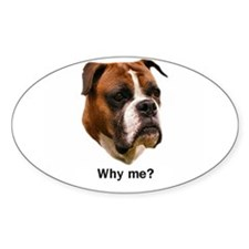 Why me? Oval Decal