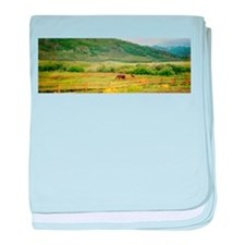 Cute Scenic baby blanket