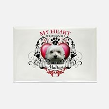 My Heart Belongs to a Maltese Rectangle Magnet