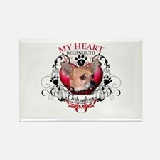 My Heart Belongs to a Chihuahua Rectangle Magnet