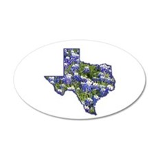 Texas 20x12 Oval Wall Peel