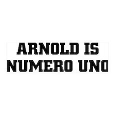 ARNOLD IS NUMERO UNO 36x11 Wall Peel