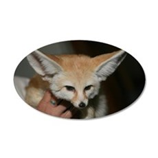 Flash the fennec fox 20x12 Oval Wall Peel
