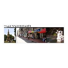 """Savannah"" 3 photo collage 36x11 Wall Peel"