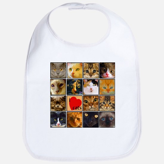 Cat Lady Loves kittens Bib