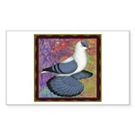 Swallow Pigeon Framed Sticker (Rectangle 10 pk)