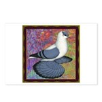 Swallow Pigeon Framed Postcards (Package of 8)