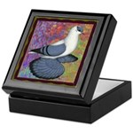Swallow Pigeon Framed Keepsake Box