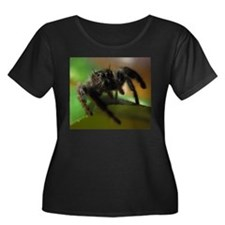 Jumping Spider T