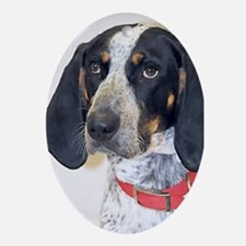 Bluetick Coonhound Ornament (Oval)