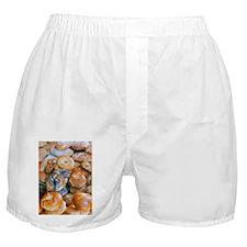 New York Bagel Boxer Shorts