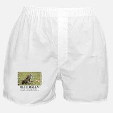 Unique Funny motivational Boxer Shorts