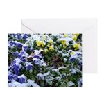 Pansies in Snow Greeting Card