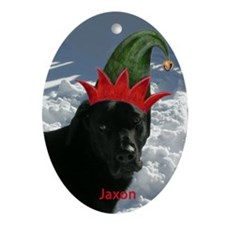 Jaxon Ornament (Oval)
