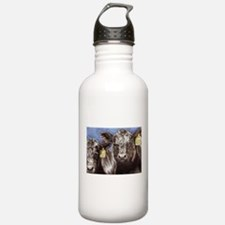 Brothers Angus Bull Calf Water Bottle
