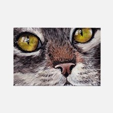 CATS EYES Rectangle Magnet