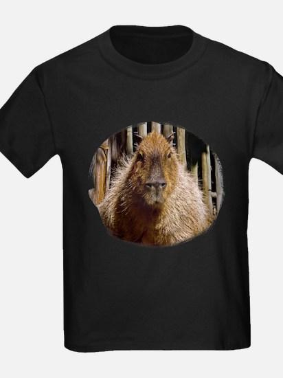 Capybara Staring T