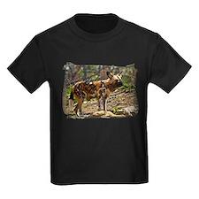 African Wild Dog 1932 T