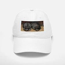 Big Bacon Pot Bellied Pigs Baseball Baseball Cap