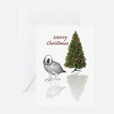 african grey christmas Greeting Card