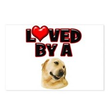 Loved by a Labrador Postcards (Package of 8)