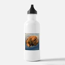 Megan, Dogue de Bordeaux Water Bottle