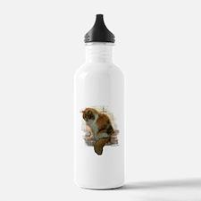 Window Calico Cat Water Bottle