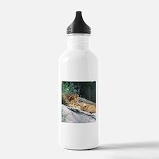 Picturesque Lions Water Bottle